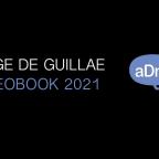 Ya está listo mi Videobook para 2021